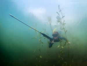 Spear-Phishing-Underwater
